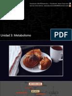 2.- Metabolismo de carbohidratos