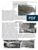 Patologia Macro_pdf