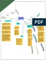 MAPA CONCEPTUAL SU 003 -2018-.pdf