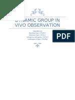 behavioural study of groups