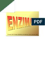 Guion_las_enzimas