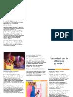 brochure press.docx