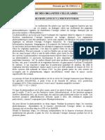 CHAPITRE_IX_LES_CHLOROPLASTES (1).pdf