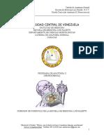 Programa Anatomia II.doc