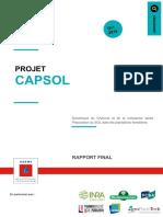 Capsol-rapport-2019
