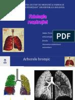 respiratia nou 2020-4580.ppt