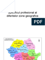 Specificul-profesional-al-diferitelor-zone-geografice