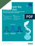 18-0424_Vibrio_Flier_3.1_kmm .pdf