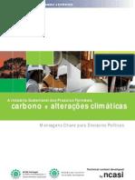 art213_brochura_carbono