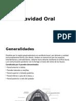 Cavidad Oral Constitución
