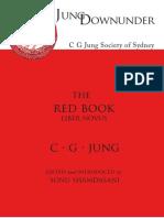 C G Jung Society of Sydney 2010 Newsletter VOL1