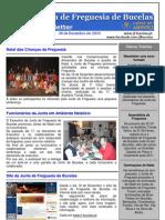 Newsletter nº 19