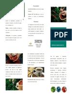 folleto cafe riesgo biologico