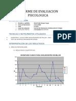 Modelo de informe MACI Y RAVEN