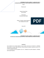 TAREA 1 ALEXANDER MAPA.docx