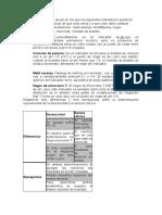 informe-cuestionario.docx
