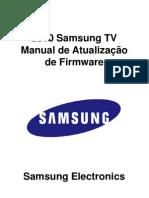 2010 Brasil Firmware for SX1 e X4