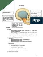 2 Fosa-Temporal-Cigomatica-y-Pterigomaxilar (3) - copia.docx