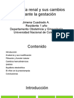 fisiologia renal.odp