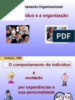 o individuo e a organização.ppt.pdf