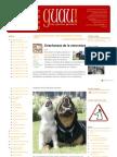 GUAU-adoptoluegoexisto1