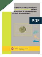 LibrodeFitoplanctonbajacalidad