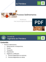Tema 2. Procesos sedimentarios.pptx