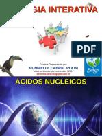 acidos_nucleicos.pdf