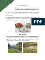 ANALISIS Y RESULTADOS.docx