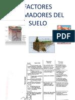 Factores Fromadores del Suelo I.pdf