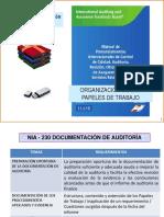 9 NIA 230 Documentación de auditoría PAPELES DE TRABAJO WP.pdf