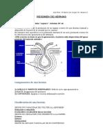 RESUMEN DE HERNIAS.docx