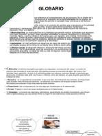 GLOSARIO KARINA.pdf