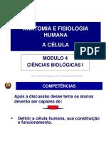 SAIA35.pdf