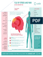 Curable Poster Chronic Pain a Cycle of Stress and Pain