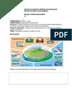CLARIDAD COGNITIVA NATURALES (1) (1).pdf
