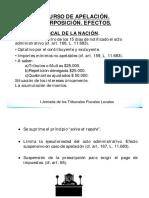 Pablo_VARELA_El_Rol_del_Contador_Publico_en_los_Tribunales_Fiscales _Locales