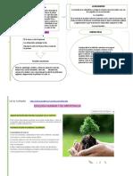 infografia 14