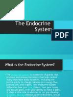 Major Glands of the Endocrine System(Presentation)