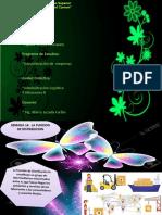 sistema de ventas- administracion- Zapata yovera.pptx