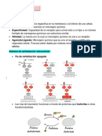 Transducción de señales flopis.pdf