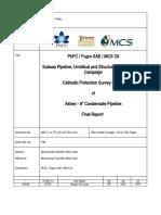 ISES CP Report 2