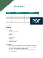 AP2 - Consigna 2