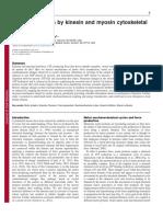 Endow_Kull_JCS.pdf