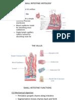 2 Digestion and  Absorption pdf.pdf