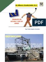 INDUCCION TRABAJOS EN ALTURA 2010.pdf