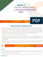 EL PRINCIPIO DE OPORTUNIDAD.pdf