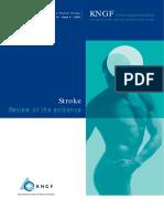 stroke_practice_guidelines