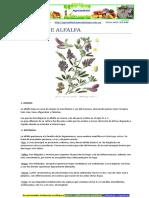 Alfalfa, su cultivo y cuidados.pdf