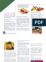 Alimentacion_saludables_folleto (1)